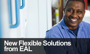 Flexible-Solutions-A